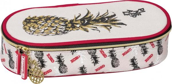 Baier & Schneider Combi-Etui RVS Pineapple