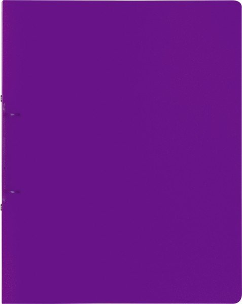 Baier & Schneider Ringbuch A4 FACT! 2R 25mm purple