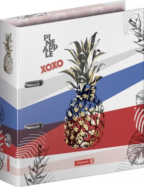 Baier & Schneider Ordner A4 80mm RVS Pineapple