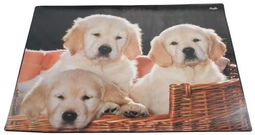 Gutenberg Schreibunterlage Hunde