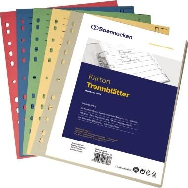 Soennecken eG Trennblätter A4 Karton 230g 50St farbig sortiert